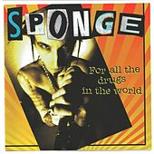 For All the Drugs in the World von Sponge