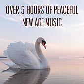 Over 5 Hours of Peaceful New Age Music by Various Artists
