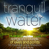 Tranquil Water - Songs and Sounds of Lakes and Ponds for Massage, Yoga, Relaxation Reiki, And More by Various Artists