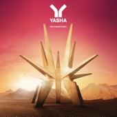 Weltraumtourist de Yasha