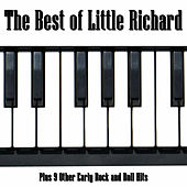 The Best of Little Richard: Plus 9 Other Early Rock and Roll Hits de Various Artists