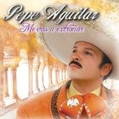 Me Vas A Extrañar de Pepe Aguilar