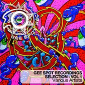 Gee Spot Recordings Selection, Vol. 1 von Various Artists