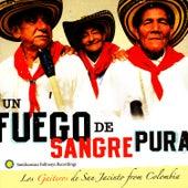 Un Fuego De Sangre Pura:  Los Gaitero de San Jacinto from Colombia by Los Gaiteros de San Jacinto