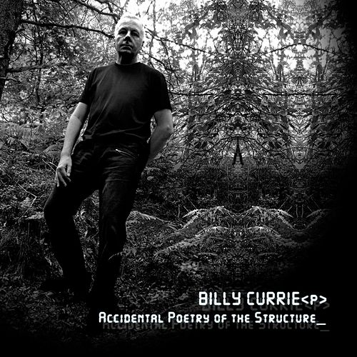 Accidental Poetry of the Structure by Billy Currie