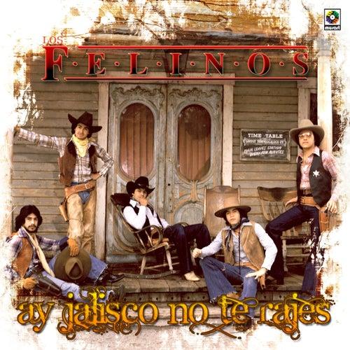 Ay, Jalisco No Te Rajes by Felinos