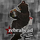 Call Your Friends de Zebrahead
