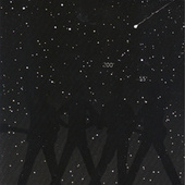 Night of the Shooting Stars by Rheostatics