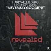 Never Say Goodbye von Hardwell