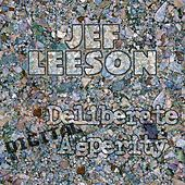 Deliberate Digital Asperity by Jef Leeson