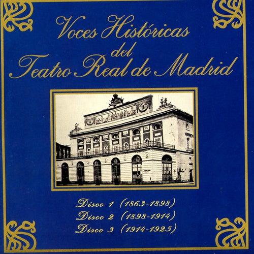 Grandes Voces Del Teatro Read De Madrid by Various Artists