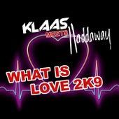 What Is Love 2K9 de Klaas