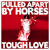 Tough Love de Pulled Apart By Horses