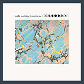 Nocturne de Wild Nothing