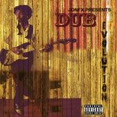 Dub Evolution von Various Artists