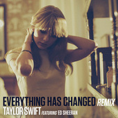 Everything Has Changed (Remix) de Taylor Swift