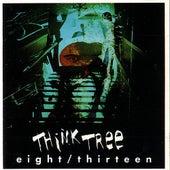 eight/thirteen by Think Tree