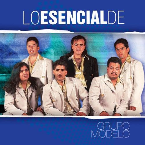 Lo Esencial De... by Grupo Modelo