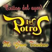 Mi Gran Tristeza - Exitos Del Ayer by Los Potros