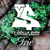 Irie (feat. Wiz Khalifa) by Ty Dolla $ign