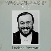 A Collection of the Greatest Tenor Voices in the World, Vol. 2 von Various Artists