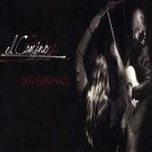 Kolla En La Ciudad de Bruno Arias