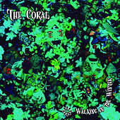 Walking In The Winter by The Coral