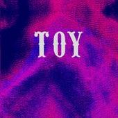 Lose My Way von Toy
