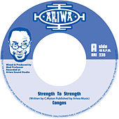 Strength To Strength by Various Artists