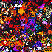 Butterfly House by The Coral
