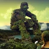 Vivid Green de Nobody