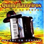 Êxitos by Quim Barreiros