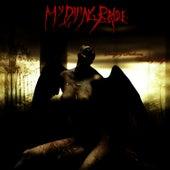 Songs Of Darkness, Words Of Light de My Dying Bride