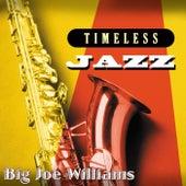 Timeless Jazz: Big Joe Williams de Big Joe Williams