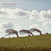 What We Have Sown (2012 Remastered Reissue) by The Pineapple Thief