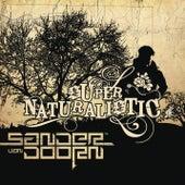 Supernaturalistic by Sander Van Doorn
