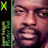 Mister Dub by Junior Delgado
