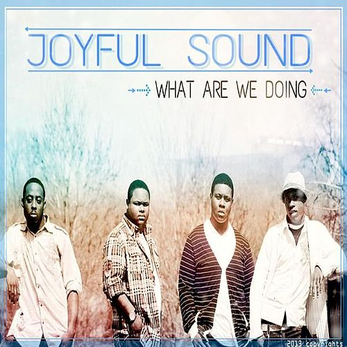 What Are We Doing by Joyful Sound