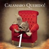 Calamaro Querido!! Cantando Al Salmon Parte 1 de Various Artists