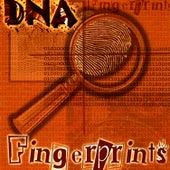DNA by Fingerprints