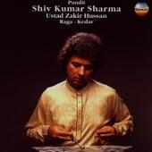Pandit Shiv Kumar Sharma - Live At The Bailey's Hotel de Pandit Shivkumar Sharma
