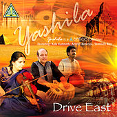 Drive East by Abhijit Banerjee
