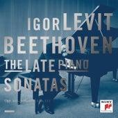 Beethoven: The Late Piano Sonatas by Igor Levit