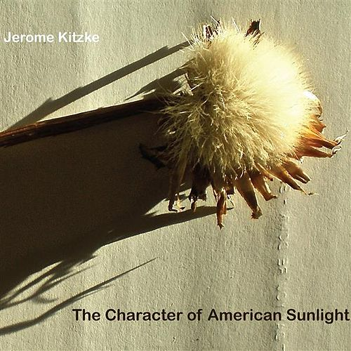 The Character of American Sunlight by Various Artists