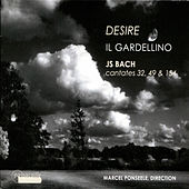 Bach: Desire - Cantates 32, 49 & 154 by Various Artists