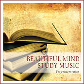 Beautiful Mind Study Music (For Concentration) by Various Artists