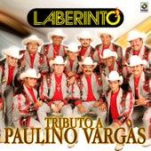 Tributo a Paulino Vargas de Laberinto