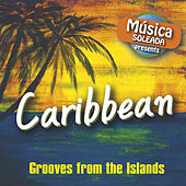 Caribbean - Grooves from the Islands von Various Artists