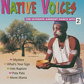 Native Voices, Vol. 2 - The Ultimate Ambient Dance Hits by Various Artists