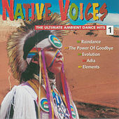 Native Voices, Vol. 1 - The Ultimate Ambient Dance Hits by Various Artists